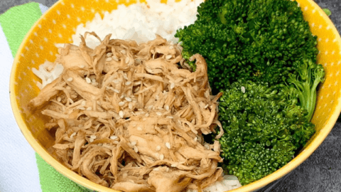 Instant Pot: Honey Garlic Shredded Chicken